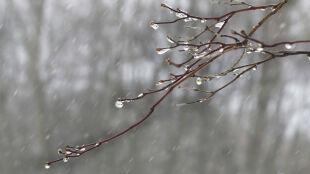 Pogoda na dziś: miejscami deszcz ze śniegiem, do 10 stopni