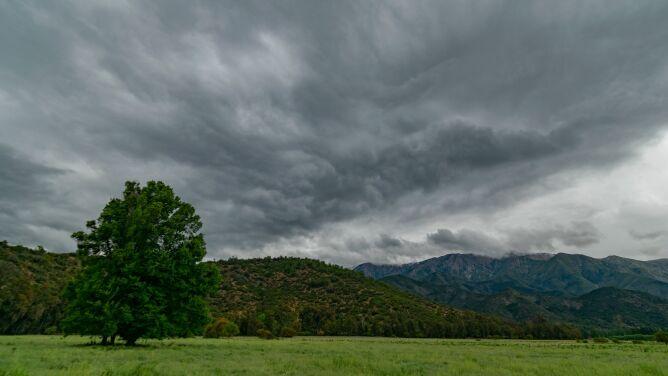 Prognoza pogody na dziś: z nieba poleje się żar. Pojawią się też burze